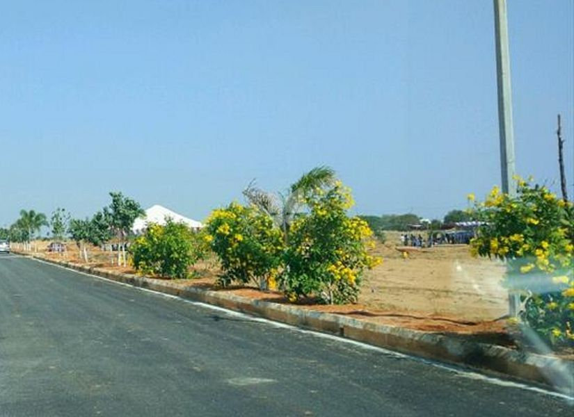North Face Ramalingeswara Swamy Vanam Plots - Project Images