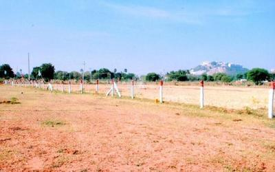 nature-land-yadadri-highway-enclave-in-779-1561728261868