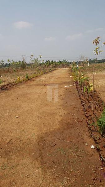 Saritha Nagar - Project Images