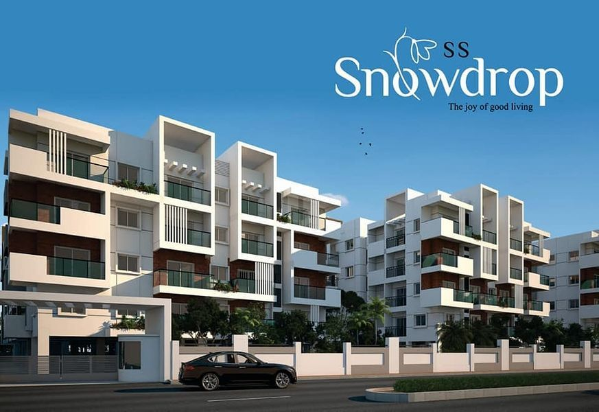 SS Snowdrop - Project Images