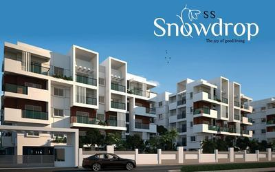 ss-snowdrop-in-1141-1579525593167