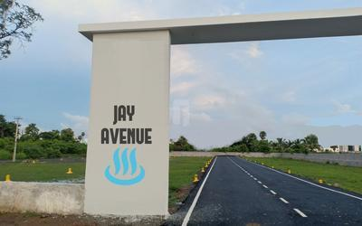 jay-avenue-in-27-1581681311850