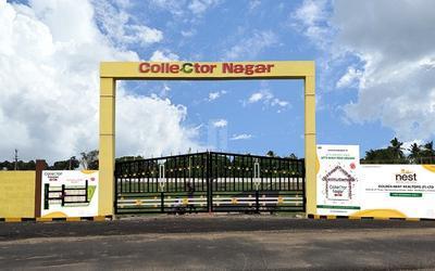 collector-nagar-in-17-1597304636305