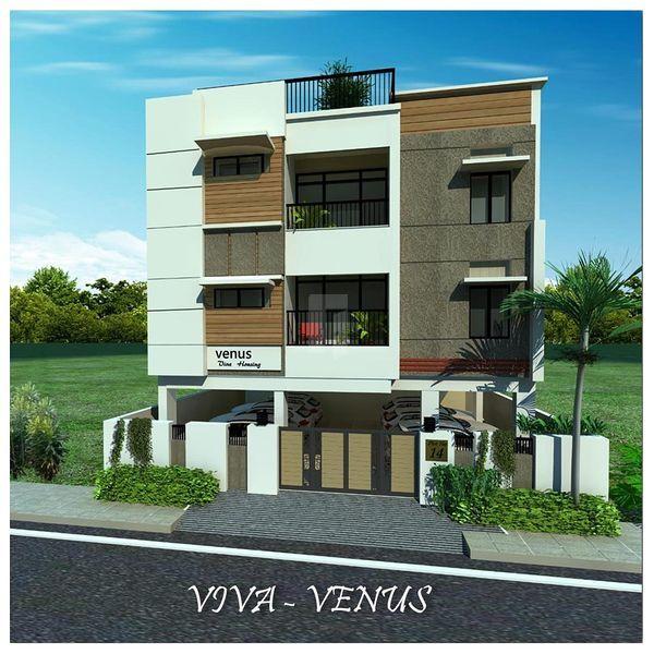 VIVA VENUS - Project Images
