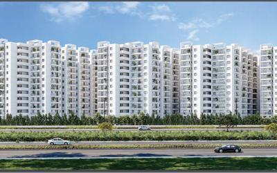 sanarelli-flats-in-526-1614249076424
