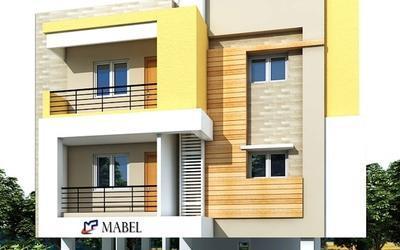 mp-mabel-in-184-1605797219272