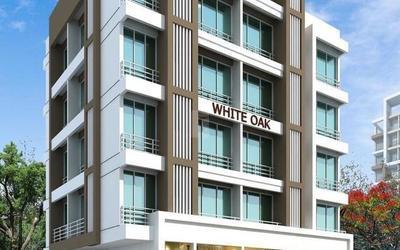 amber-white-oak-in-1873-1615218028602