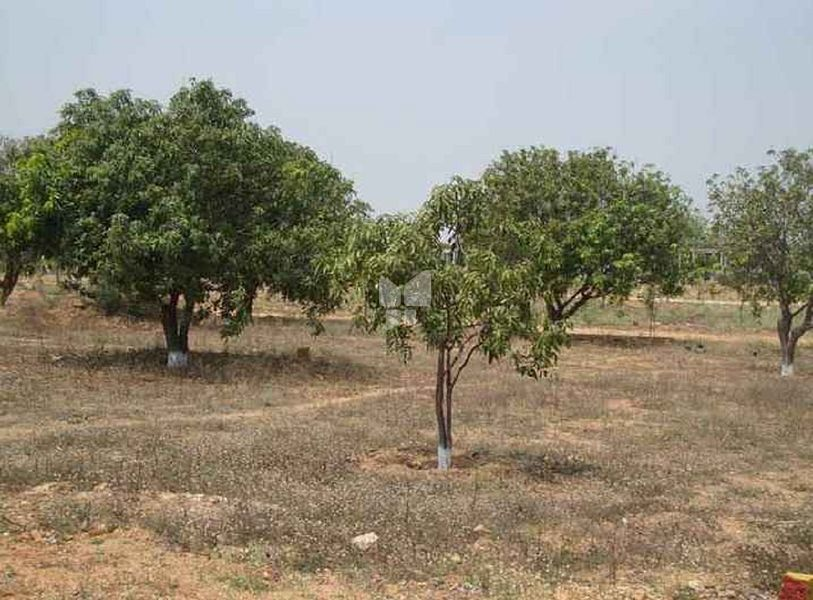 MSR Lions Brundhavanam - Elevation Photo