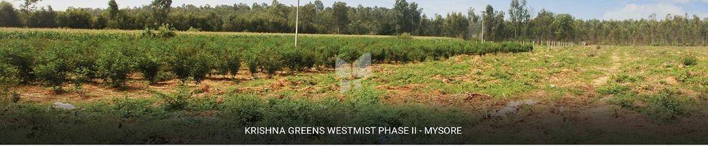 M and M Krishna Greens Westmist Phase II - Elevation Photo