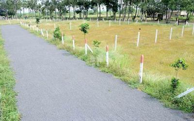 chaitanya-developers-sai-greens-in-wagholi-master-plan-1xne