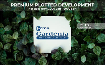 ferns-gardenia-in-161-1601099437197