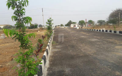 tricolour-silver-coast-in-kothapet-elevation-photo-21ln