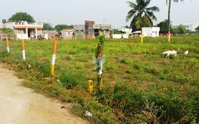 sri-lingam-oragadam-plot-in-oragadam-elevation-photo-nzw