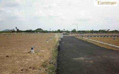 flamingo-serene-in-bellary-road-master-plan-1bmb