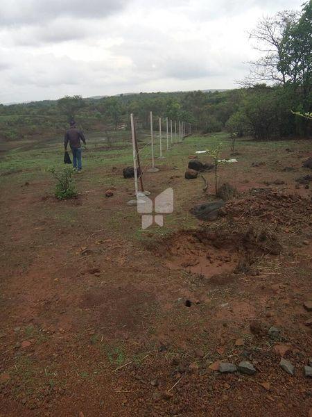 Treeluck Indrapuri Township Phase II - Project Images