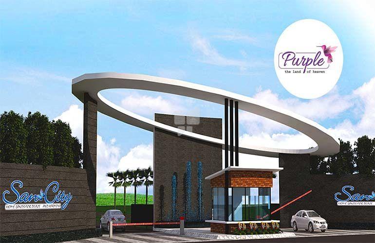 Sancity Purple - Project Images