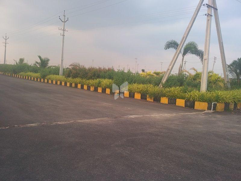 Vikhyath Haritha Vanam Phase II - Project Images
