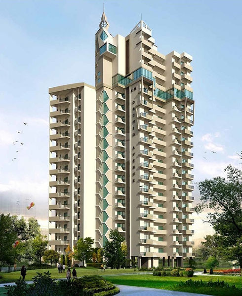 SRB Orchid Avenue - Elevation Photo