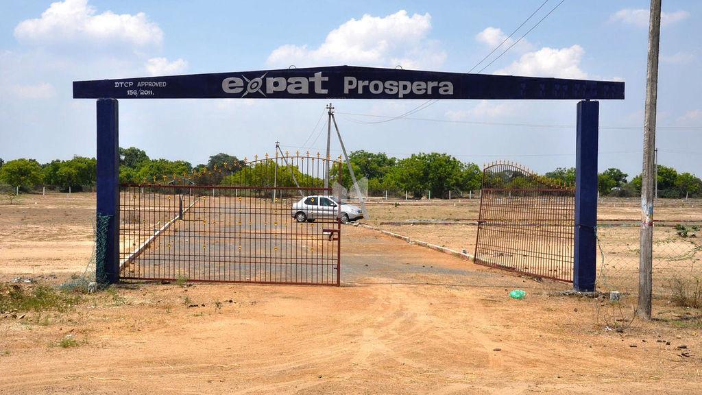 Expat Prospera - Elevation Photo