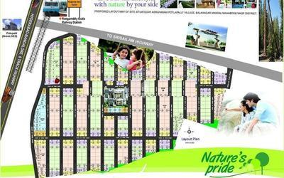 nature-natures-pride-in-shadnagar-master-plan-1utz