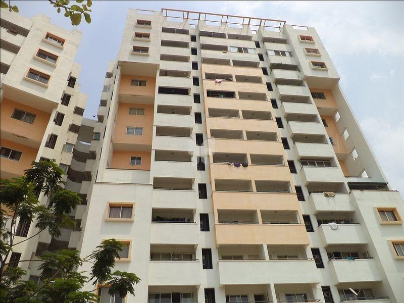 Golden Palms Apartment - Project Images