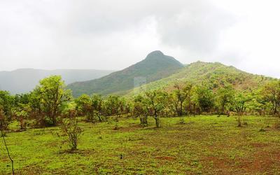 greenland-bhor-scheme-in-3518-1567058008468