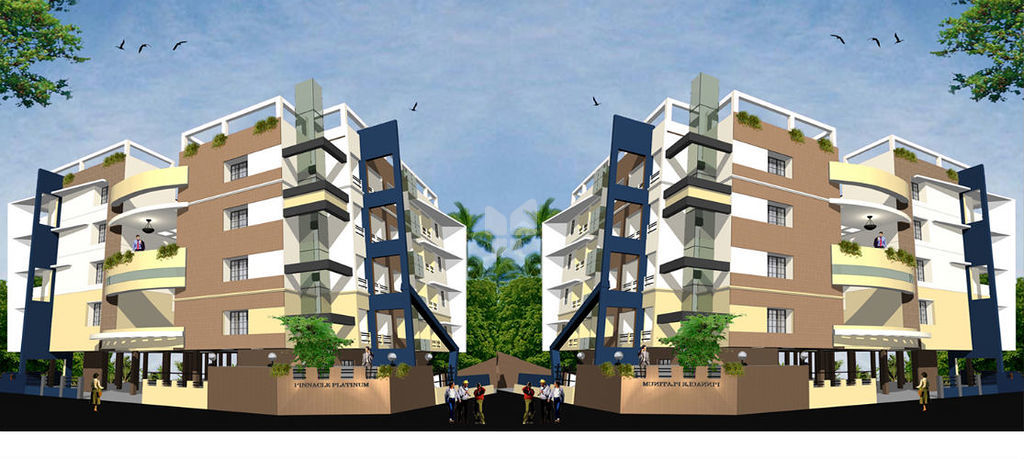 Pinnacle Platinum - Project Images