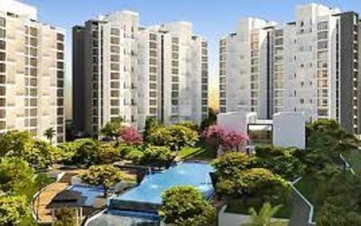 marvel-simrose-in-koregaon-park-elevation-photo-xfx