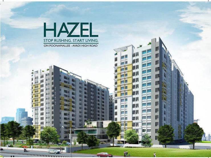 Hazel - Project Images