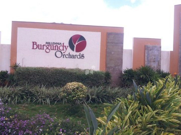 Millennia Burgundy Orchards Phase 2 - Project Images