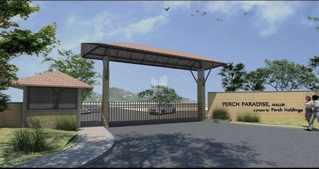 Perch Paradise - Elevation Photo