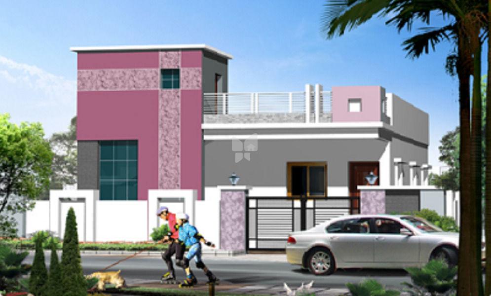 TPS Krishna Nagar - Project Images