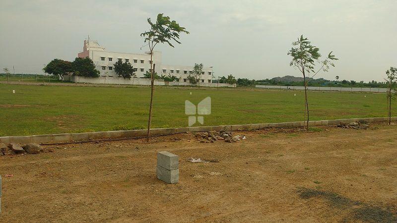 Kundrathur Garden - Project Images