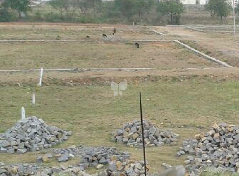 Mahesh Project 10 Phase II - Elevation Photo
