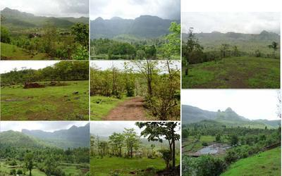 shristi-mountain-heights-elevation-photo-1tpd