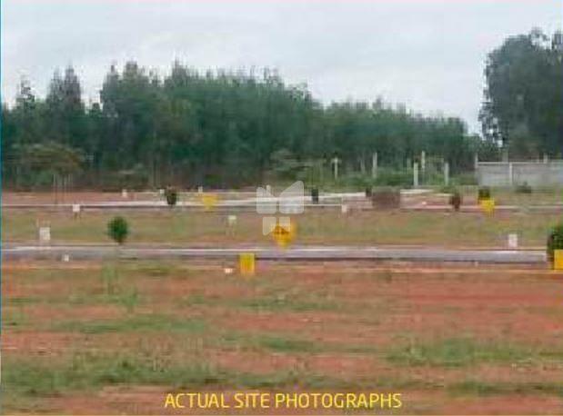 UTC Royal Enclave - Project Images