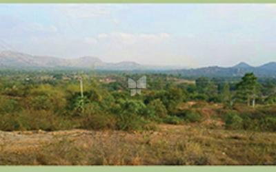 skc-rainforest-phase-iii-in-mysore-road-elevation-photo-1pps