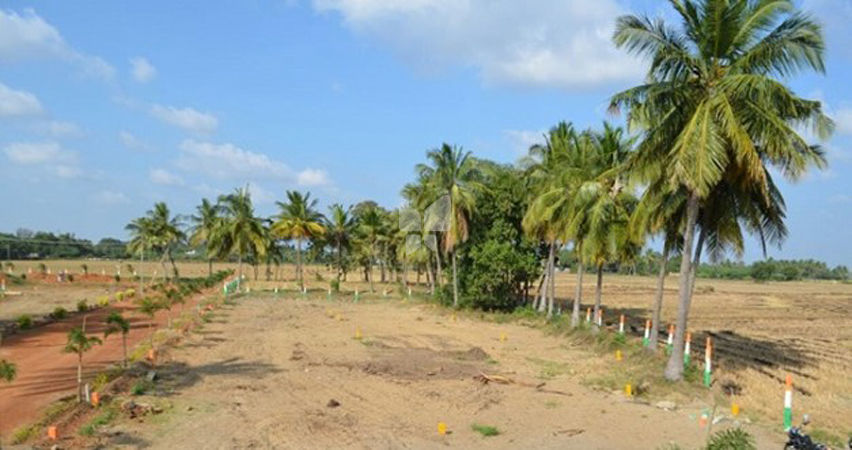 Golden Leaf Karumathampatti Plot - Master Plans