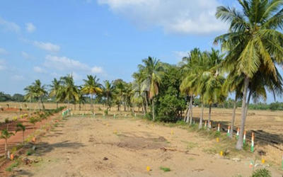 golden-leaf-karumathampatti-plot-in-avinashi-road-master-plan-1es5