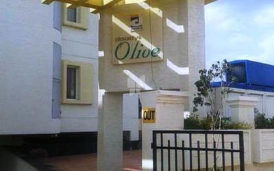 daadys-olive-apartments-in-electronic-city-phase-ii-elevation-photo-osr
