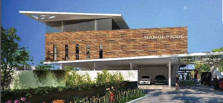 Nandi Pride - Project Images