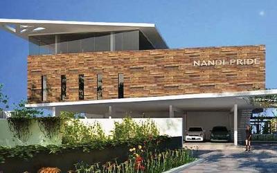nandi-pride-in-horamavu-9jz