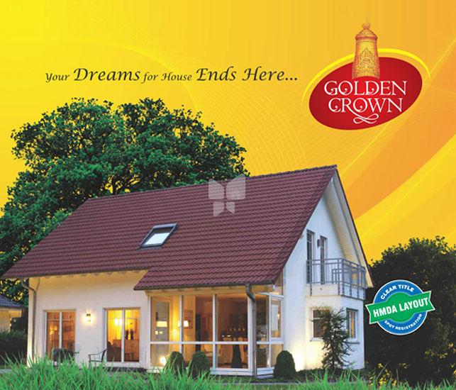 CK Golden Crown - Project Images