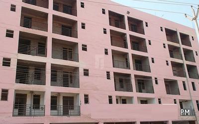 shiv-shankar-shiv-home-2-in-sector-61-1kwx