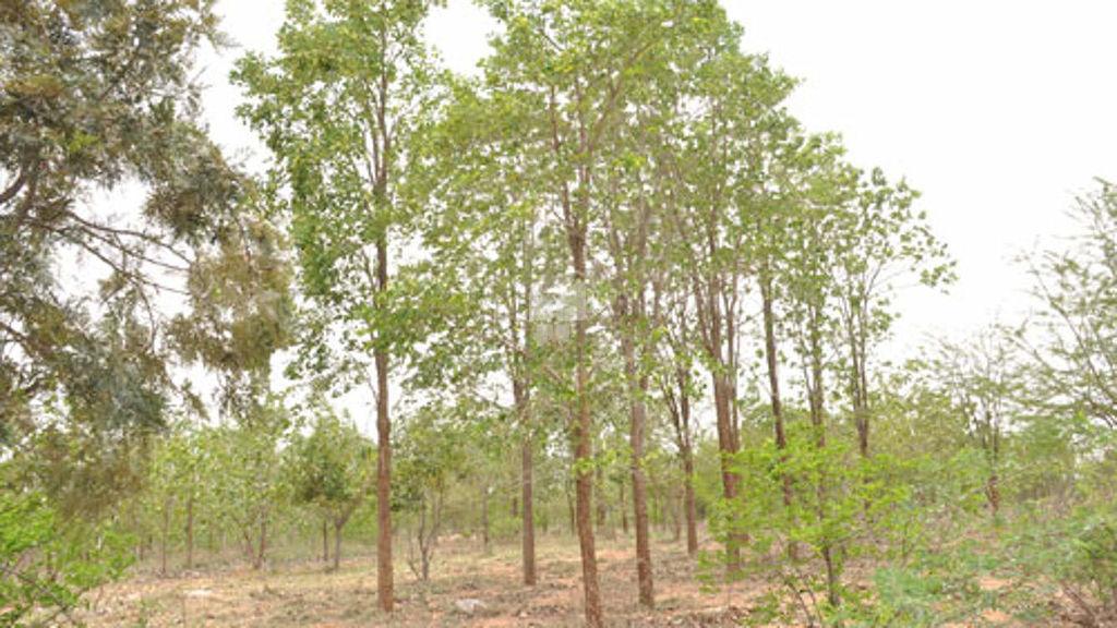 Srinidhi Meridian Park - Project Images