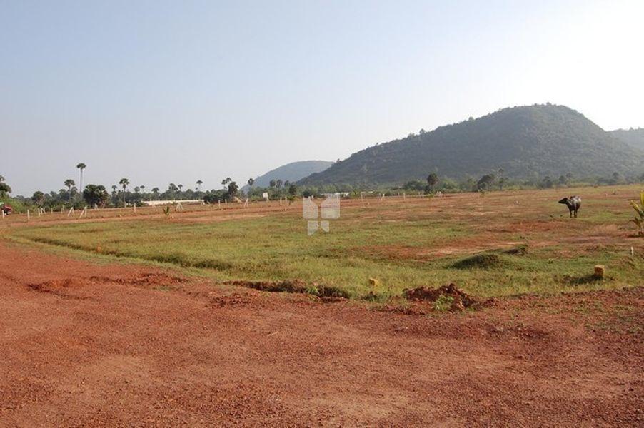 Siri Venkateswara Baalaji Hill County - Elevation Photo