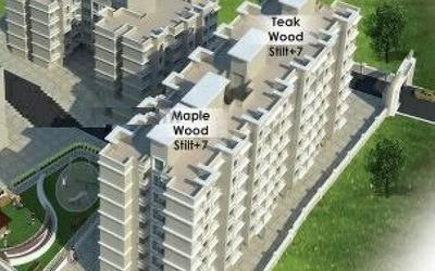 maple-wood-and-teak-wood-in-2223-1571996450029