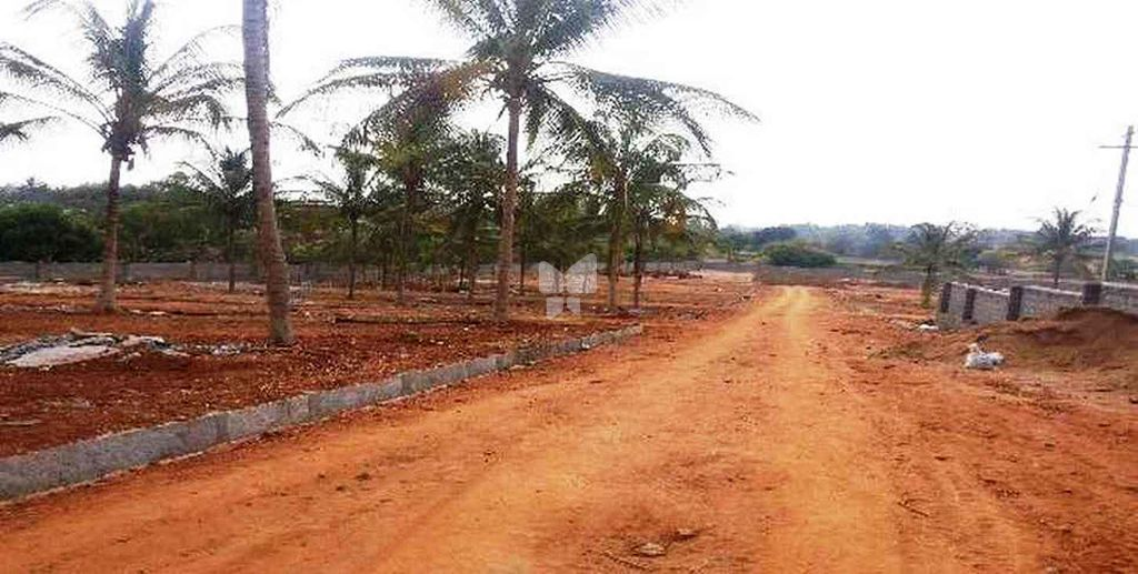 Nisarga County - Project Images