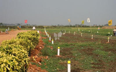 sri-venus-vellalore-plot-in-vellalore-elevation-photo-1vsc