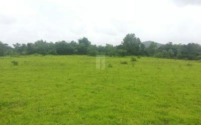 treeluck-indrapuri-township-phase-i-in-raigad-elevation-photo-1tzj